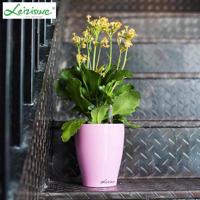 China Mini Self-Watering Bonsai Pots on sale