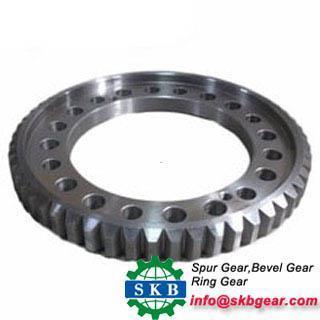 China Special custom standard forging mechanical internal ring gear on sale